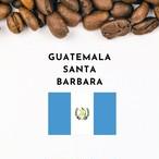 GUATEMALA Santa Barbara Bourbon (グァテマラ サンタバーバラ農園)100g
