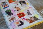 ネコのポストカード3枚セット-②