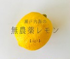 瀬戸内レモン1kg:大自然で生きる放置栽培の無農薬レモン