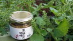 紫蘇の実味噌