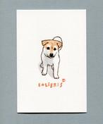 『木版画:子犬彩色』