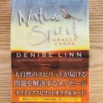 ネイティブスピリットオラクルカード ~大自然のスピリットが届ける  問題を解決するメッセージ~