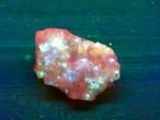 101) 蛍光鉱物