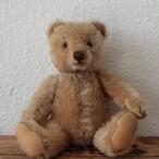 [195]アンティークシュタイフ テディベア オリジナルテディ Original Teddy 22cm