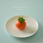 mysterious fruit pot (mikan) ハオルチア・玉緑