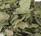 レモンバーム<メリッサ>(新鮮・低温高速乾燥)10g