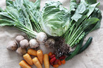 有機栽培・特別栽培の野菜の詰め合わせセット 7〜9品
