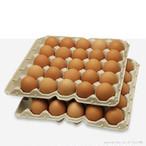 赤玉ネッカリッチ卵 50個入り