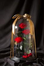 【特別なプレゼントや開店祝いに】DESTINY ROSE(デスティニーローズ)(3本立ち)