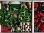 京の野菜重と四季の果実箱 二段重