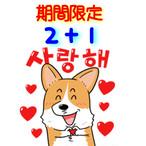 [EVENT]2+1!!殺菌除菌マスクケース