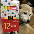 蛍光色鉛筆 12色 コーリン鉛筆