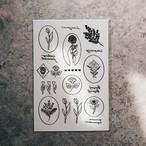 "Tattooseal '' black """