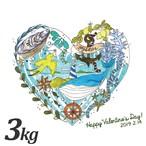 オリジナルバレンタインギフトカード付【朝どれ直送】殻付養殖真牡蠣3kg 加熱用