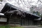 [撮影地情報]上野(東京国立博物館)エリアについて