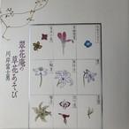 翠花庵の草花あそび 著者 川岸富士男 青幻舎