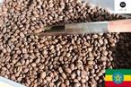 エチオピア-イルガチェフェG1-ウォッシュド 200g