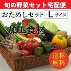 お試し旬の野菜&加工食材:詰合せセット【Lセット(9~12種類)】「3~5人向き」宅配サービス【送料無料】