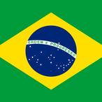 ブラジル サンタカタリーナ 100g