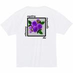BlueRose 1st (Purple)