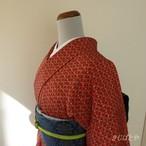 正絹 赤に三味線柄の小紋 袷の着物