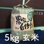 北海道産極上ののせ米(ななつぼし)5kg玄米