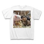 子猫と子豚のTシャツ【送料無料】