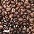 ガテマラピーベリー(ガテマラ)生豆240gを焙煎