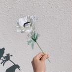 mini flower/アネモネ