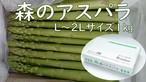 『森のアスパラ』極太サイズ 1㎏ 佐賀多良岳 果樹園育ち
