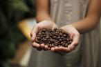 僕が選んだ世界の珈琲豆セット