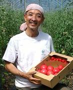ふるさとチョイスで人気! 有機JASトマトとミニトマト 1kg セット!