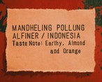 インドネシア マンデリン ポルン アルフィナー【NEW】