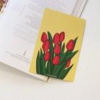 [1107] チューリップポストカード4色セット