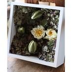 アイスフラワー「睡蓮の庭」