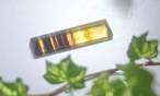 フローライト(CASA BLESSING®)fluo-0001