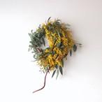 ミモザと紅蔓のアシンメトリー・リース【bdfa20005】ドライフラワー