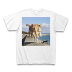 飛び猫Tシャツ2【送料無料】