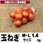 1.4kg袋 玉ねぎ M~Lサイズ 北海道産