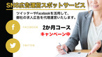 SNS広告運営スポットサービス 2ケ月