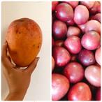 【笠原さま専用】大マンゴーとパッションフルーツ
