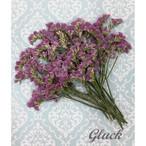 コンパクト押し花 ハイブリットスターチス(ピンクパープル) 少量をパックにしてお届け! 押し花素材