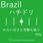 ブラジル ハチドリ モンテアレグレ農園【シティ】100g