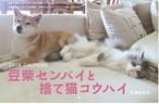 【New】2018 CALENDER 豆柴センパイと捨て猫コウハイ(石黒由紀子)