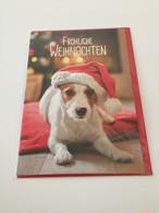 ドイツ直輸入!  クリスマスカード  サンタ帽子が似合うワンちゃんが可愛い