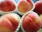 Peach 白桃のジャム(白鳳 & 川中島白桃)