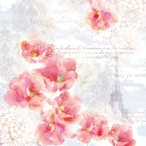入荷しました|完売再入荷【Ambiente】バラ売り2枚 ランチサイズ ペーパーナプキン TINTED DREAM ピンク