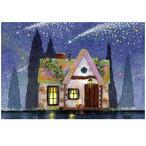 『Starry night』 満天の星空に流れ星が降るかわいいお家 神秘的な夜のイラストのポストカード