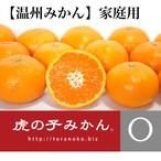 【予約/2018年1月出荷】虎の子みかん・温州【家庭用5kg】