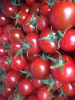 完熟ミニトマト1k